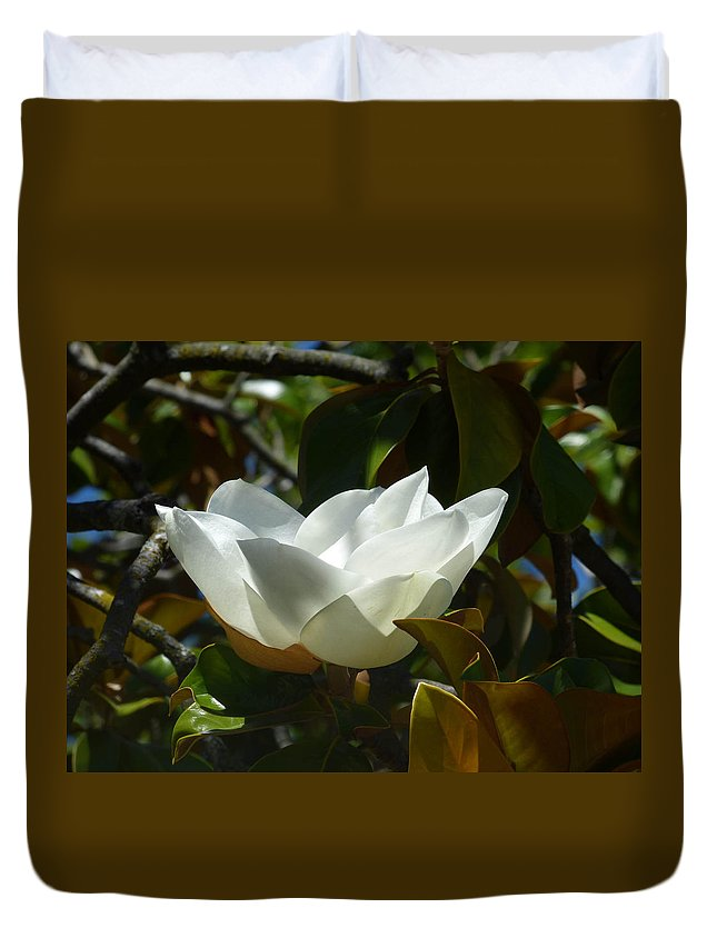 Magnolia Flower Duvet Cover featuring the photograph Magnolia Flower Chalice by Andrea Freeman