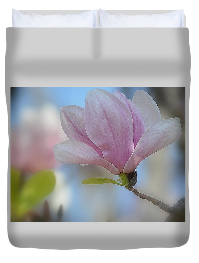 Art Duvet Cover featuring the photograph Magnolia Flower IIi by Joan Han