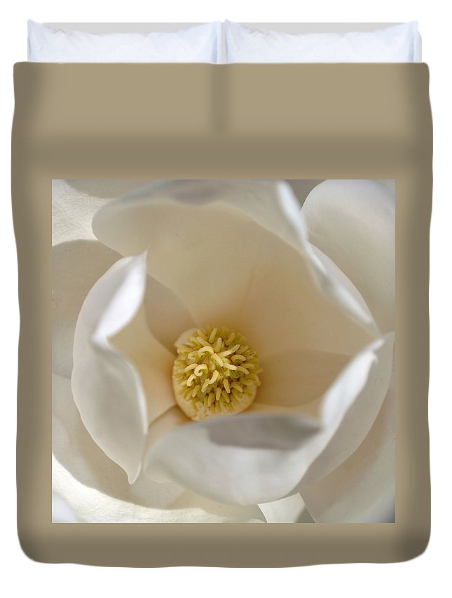 Magnolia Duvet Cover featuring the photograph Magnolia Flower by Jill Reger