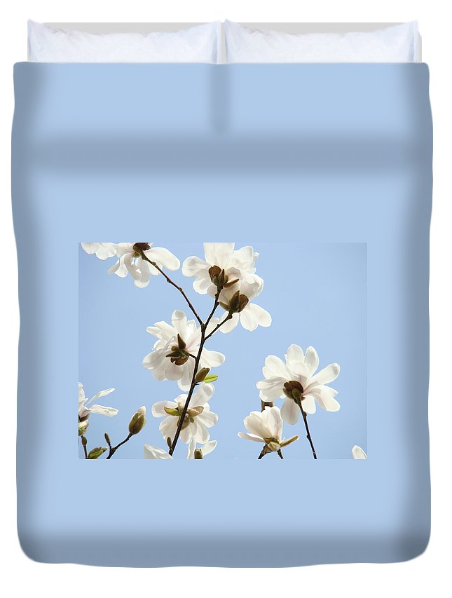 Magnolia Duvet Cover featuring the photograph Magnolia Flowers White Magnolia Tree Flowers Art Spring Baslee Troutman by Baslee Troutman