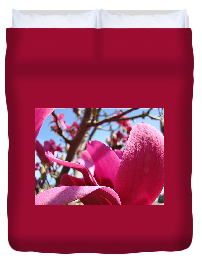 Magnolia Duvet Cover featuring the photograph Magnolia Tree Pink Magnoli Flowers Artwork Spring by Baslee Troutman