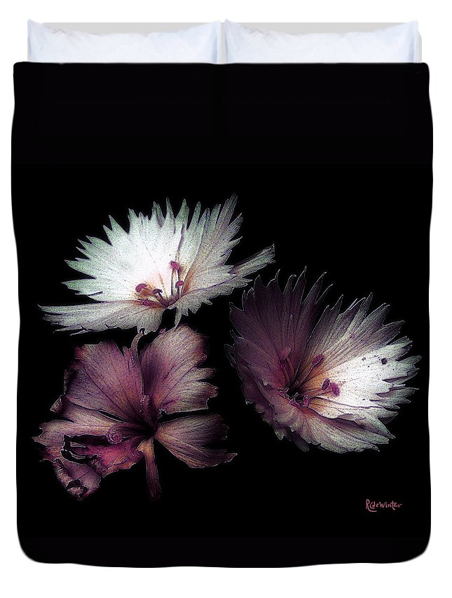 Dianthus Duvet Cover featuring the painting Maiden Mother Crone by RC deWinter