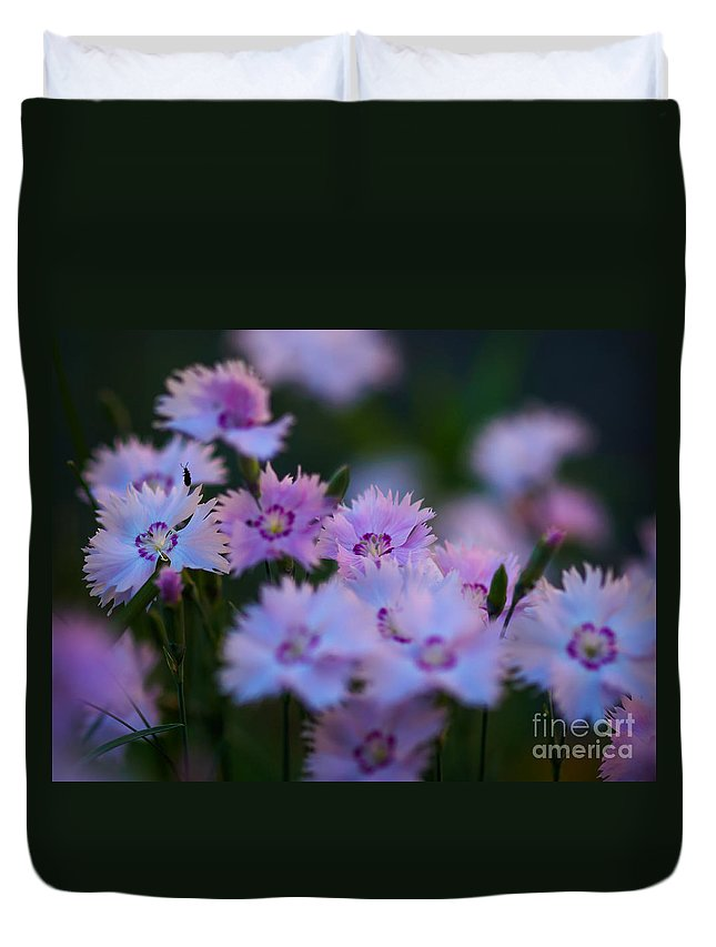 Dianthus Deltoids Duvet Cover featuring the photograph Maiden Pink On My Mind by Ismo Raisanen