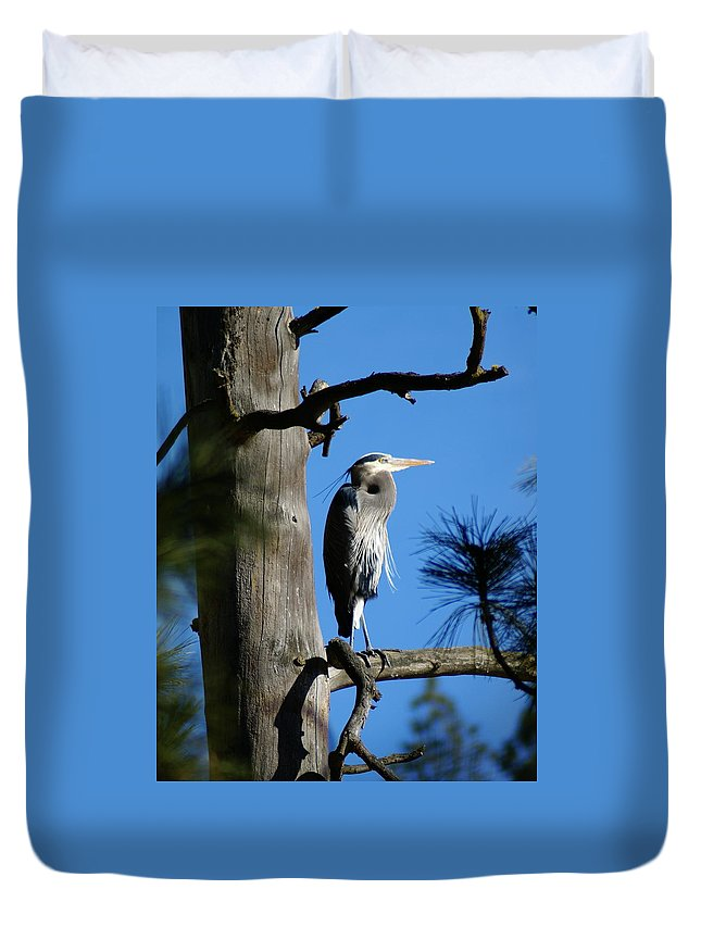 Birds Duvet Cover featuring the photograph Majestic Great Blue Heron 2 by Ben Upham III