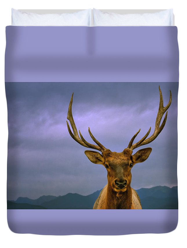 Elk Duvet Cover featuring the photograph Majestic Elk by Mitch Spence