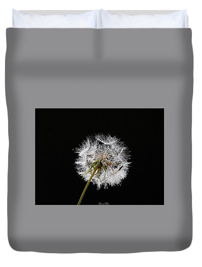 #fineart #art #photography #nature Duvet Cover featuring the photograph Make A Wish by Bernd Hau