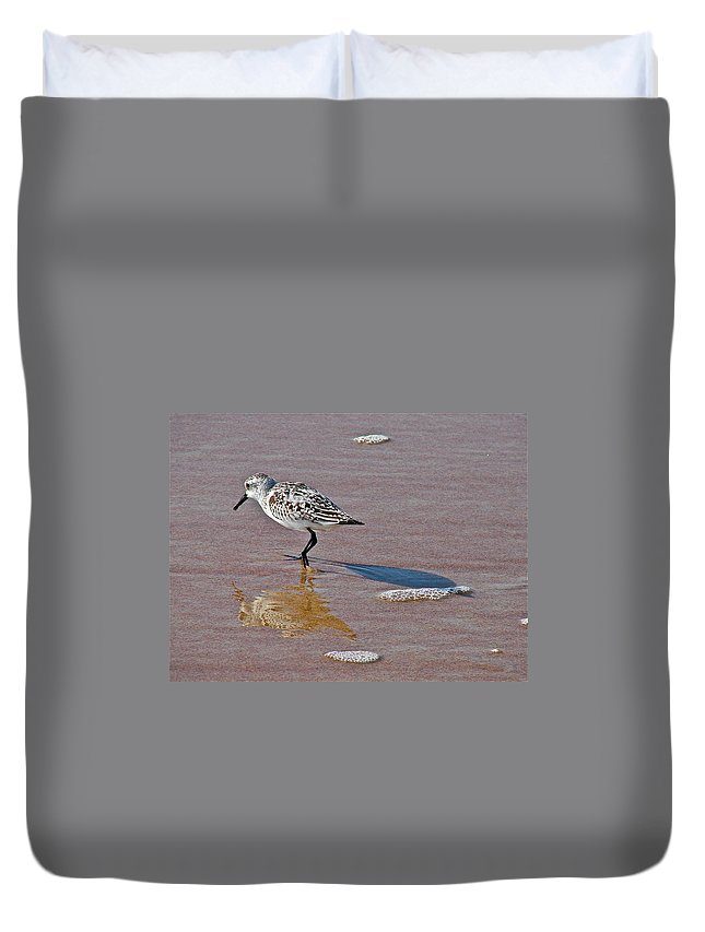 Bird Duvet Cover featuring the photograph Making Its Mark by Diana Hatcher
