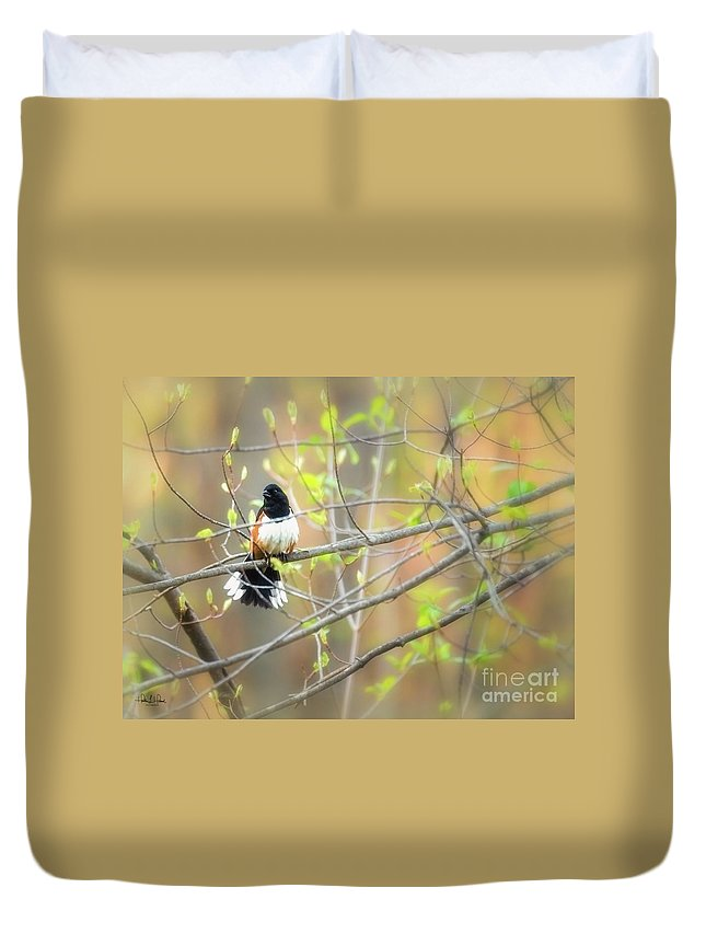 Aves Duvet Cover featuring the photograph Male Eastern by Heather Hubbard