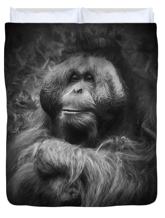 Male Orang Utan Duvet Cover featuring the photograph Male Orang Utan by Sheila Smart Fine Art Photography