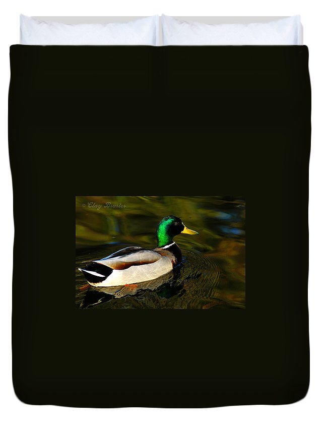 Clay Duvet Cover featuring the photograph Mallard Green by Clayton Bruster