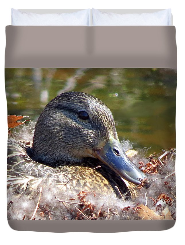 Rhinebeck Duvet Cover featuring the photograph Mama Nesting by Donna Cavanaugh