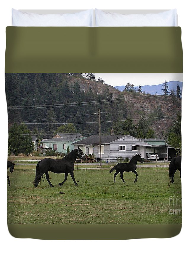 Friesian Duvet Cover featuring the photograph Mamas And Babies by Louise Magno