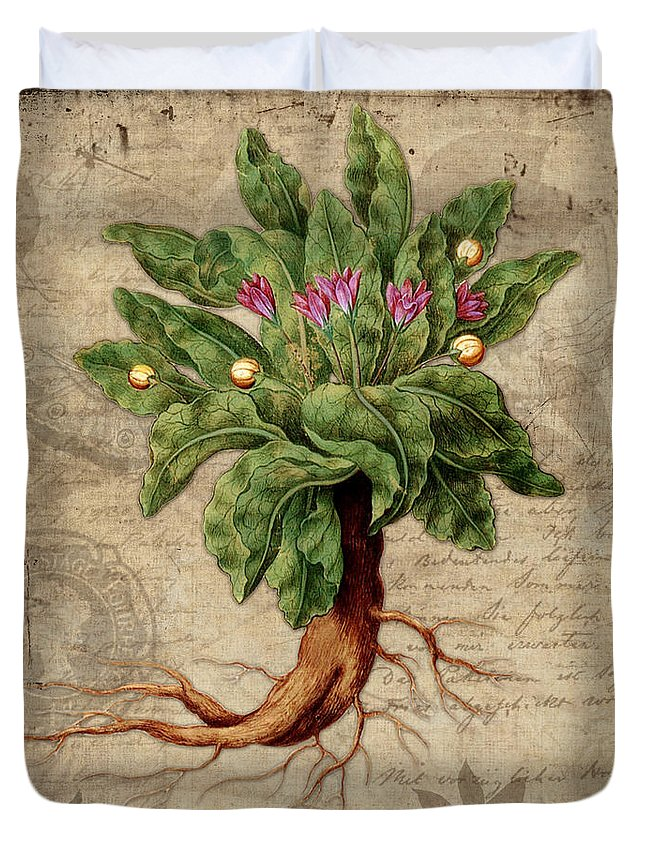 Mandrake Duvet Cover featuring the painting Mandrake Vintage Elements Botanicals Collection by Tina Lavoie