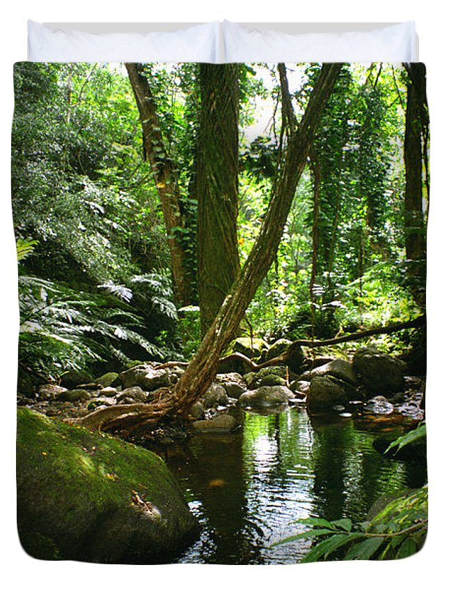Green Duvet Cover featuring the photograph Manoa Valley Stream by Kevin Smith