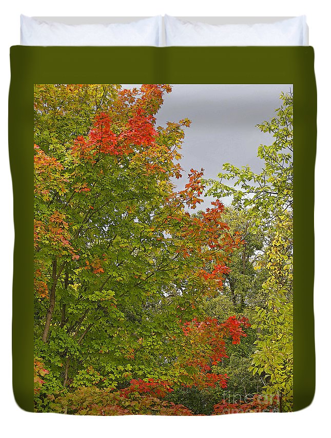 Autumn Duvet Cover featuring the photograph Maple Aflame by Ann Horn