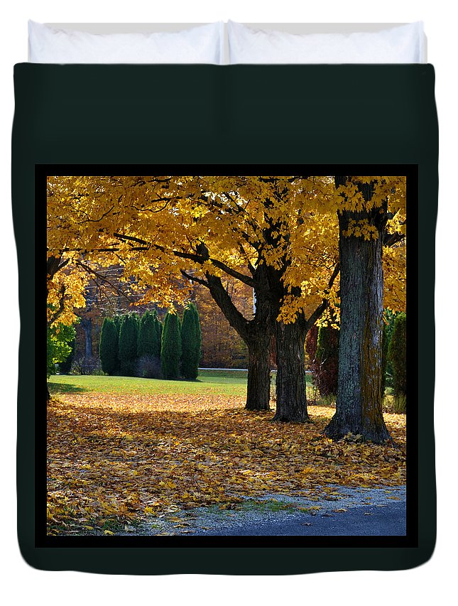 Trees Duvet Cover featuring the photograph Maple And Arborvitae by Tim Nyberg