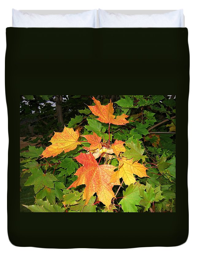 Maple Leaves Duvet Cover featuring the photograph Maple Mania 10 by Will Borden