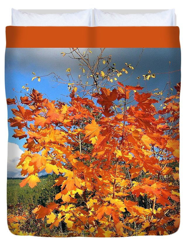 Autumn Duvet Cover featuring the photograph Maple Mania 8 by Will Borden