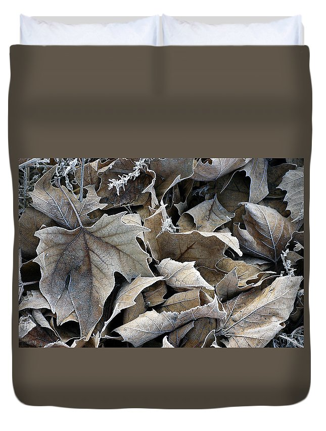 Maple Duvet Cover featuring the photograph Maple Salad by D'Arcy Evans