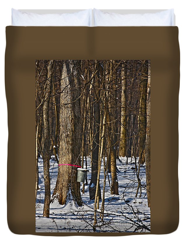 Sirup Duvet Cover featuring the photograph Maple Sirup Hdr No1 by Alan Look