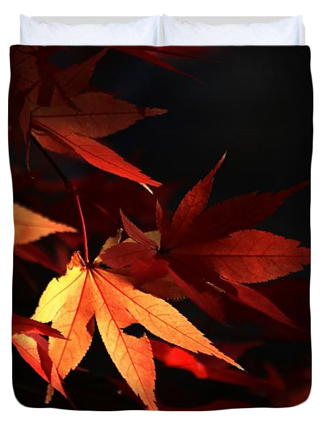 Autumn Duvet Cover featuring the photograph Maple Tree Leaves I by Carol Montoya