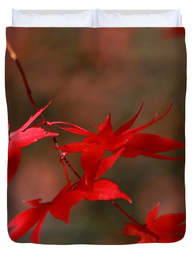 Autumn Duvet Cover featuring the photograph Maple Tree Leaves II by Carol Montoya