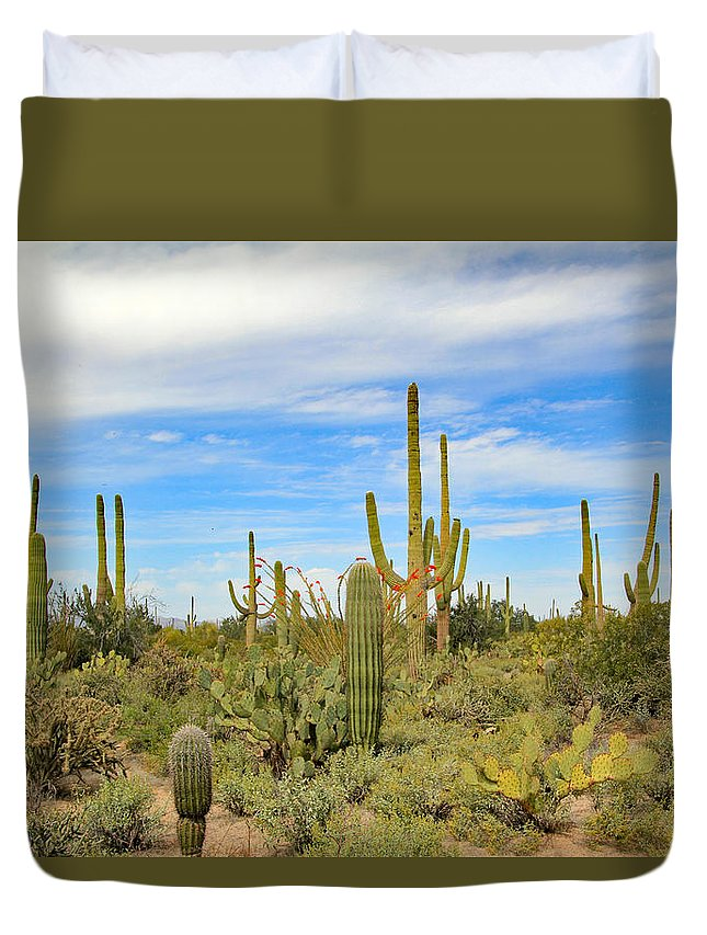 Duvet Cover featuring the photograph March Flowers And Cactus by Kevin Mcenerney