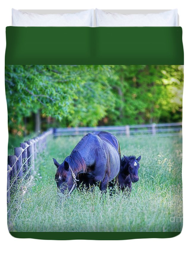 Mare Duvet Cover featuring the photograph Mare And Foal In Shadows by David Arment