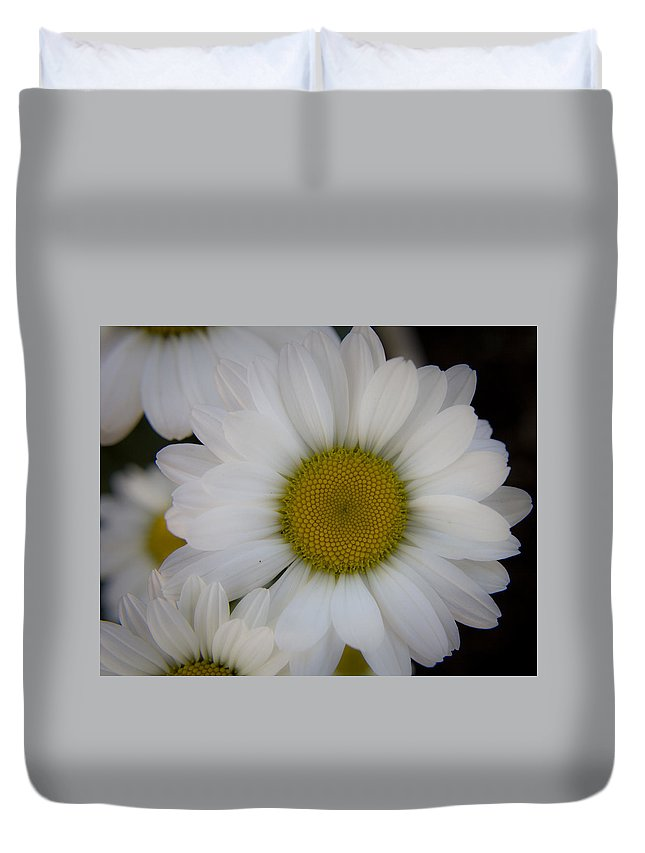 Marguerite Duvet Cover featuring the photograph Marguerite Daisies by Teresa Mucha