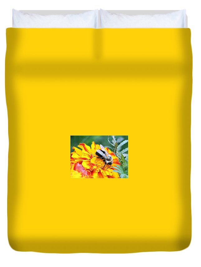 Bumble Bee Duvet Cover featuring the photograph Marigold And The Bee by Jennifer Robin