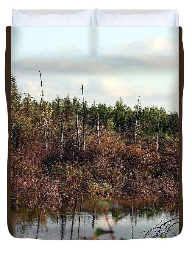 Marsh Lake Water Aquatic Wild Natural Mother Nature Pond Duvet Cover featuring the photograph Marsh by Andrea Lawrence