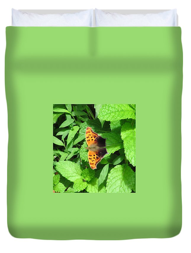 Maryland Eastern Comma Images Maryland Common Anglewing Butterfly Images Prints Maryland Butterfly Images Eastern Comma Prints Common Anglewing Photograph Forest Life Biodiversity Forest Ecology Entomology Nature Unique Species Black And Orange Butterfly Leaf Winged Butterfly Images Butterfly On Spearmint Leaves Duvet Cover featuring the photograph Maryland Eastern Comma by Joshua Bales