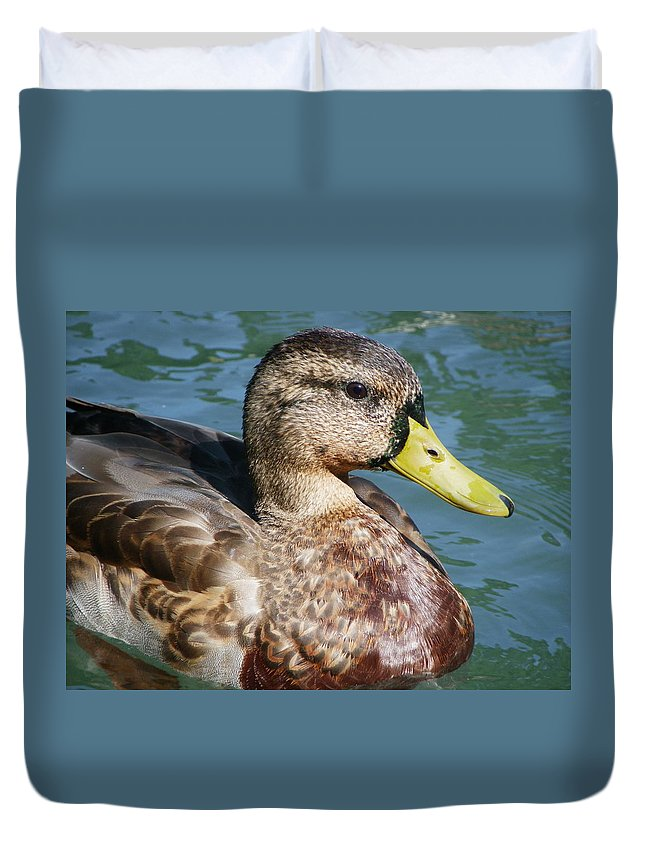 Birds Duvet Cover featuring the photograph Master Mallard by Peggy King