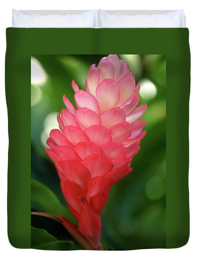 Flowers Duvet Cover featuring the photograph Maui Pink Ginger by Kathy Yates