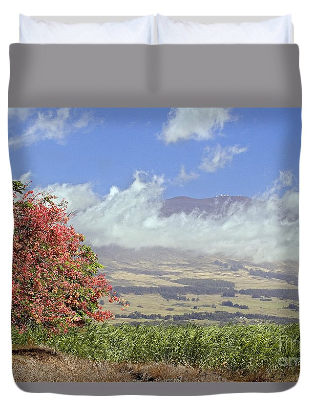 Afternoon Duvet Cover featuring the photograph Maui Science City by Dave Fleetham - Printscapes