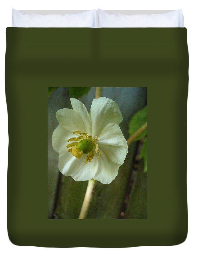 May Apple Duvet Cover featuring the photograph May Apple Blossom by Peggy King