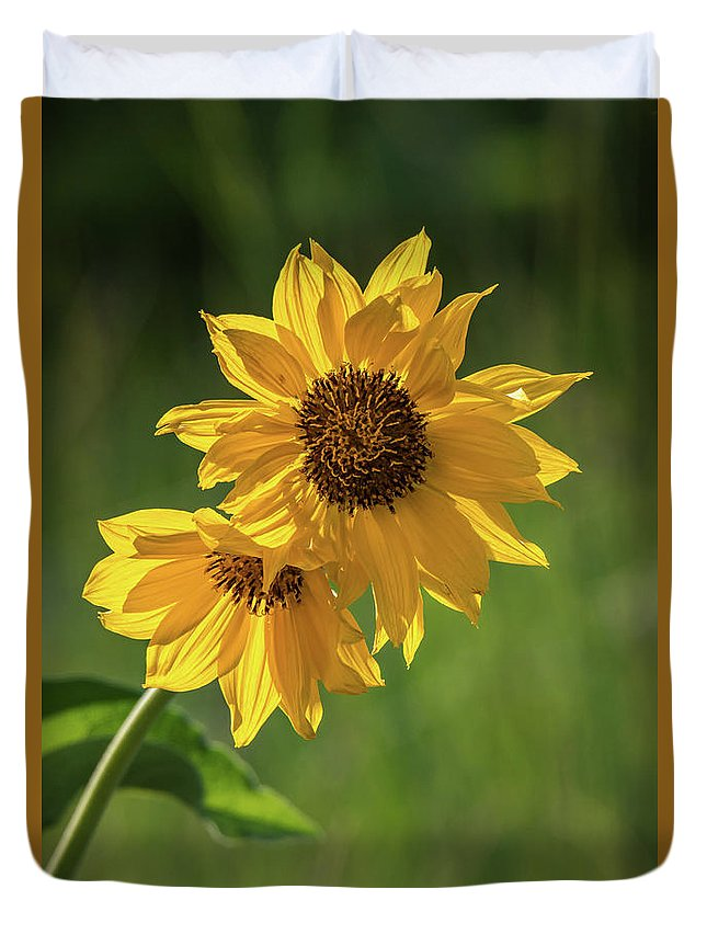 Montana Wildflowers Duvet Cover featuring the photograph May Flowers by Wild Montana Images