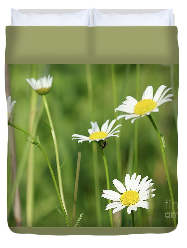 Camomile Duvet Cover featuring the photograph Meadow Detail White Wild Flowers by Goce Risteski