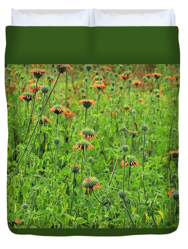Wildflower Duvet Cover featuring the photograph Meadow With Orange Wildflowers by Robert Hamm