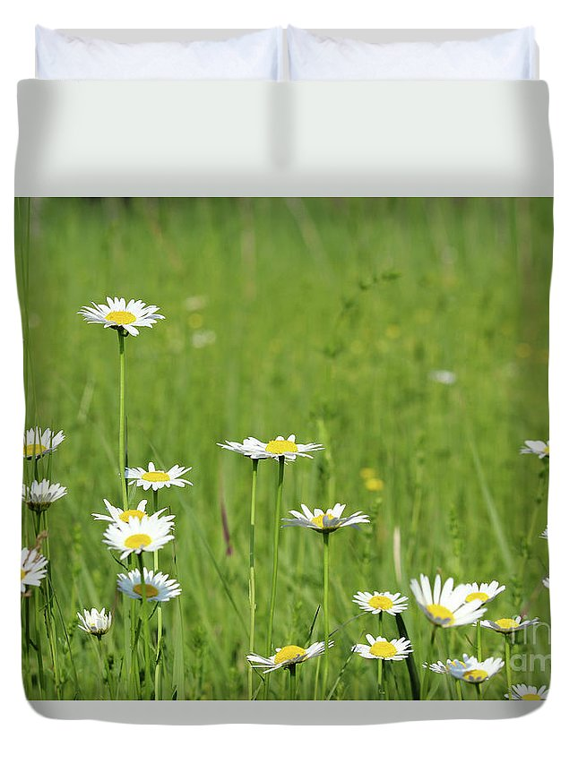 Camomile Duvet Cover featuring the photograph Meadow With White Wild Flowers Spring Scene by Goce Risteski