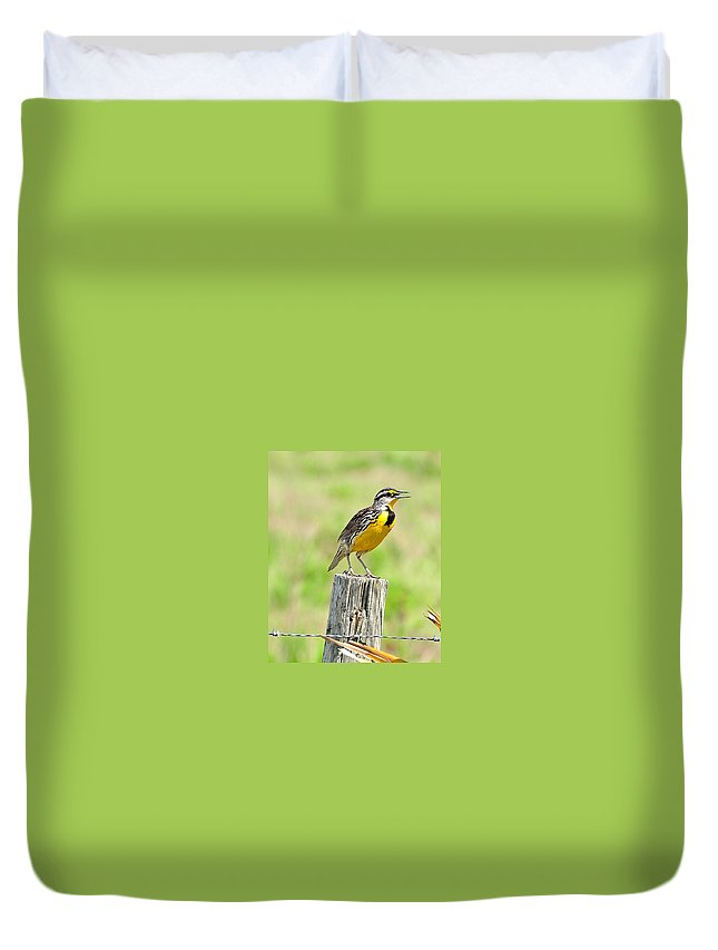 Meadowlark Duvet Cover featuring the photograph Meadowlark 7 by Amy Spear