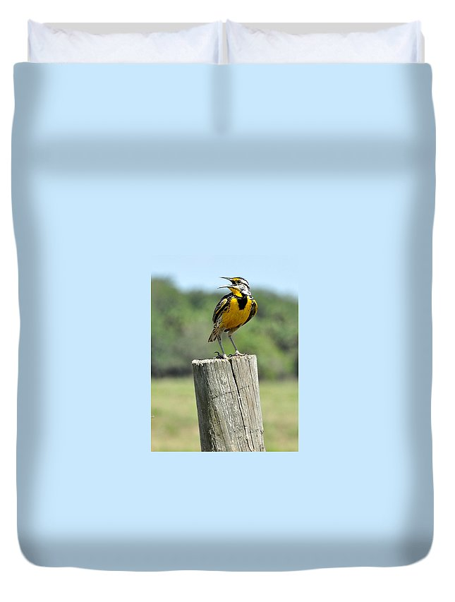 Meadowlark Duvet Cover featuring the photograph Meadowlark 8 by Amy Spear