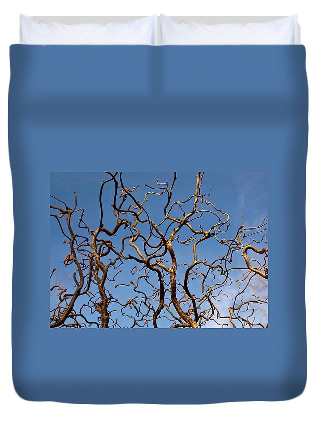 Medusa Duvet Cover featuring the photograph Medusa Limbs Reaching For The Sky by Douglas Barnett