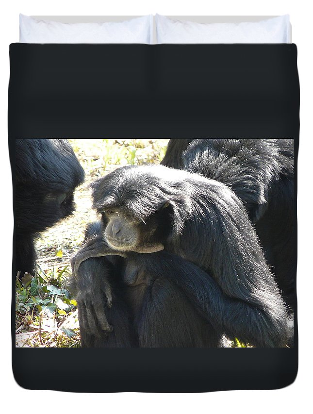 Animal Duvet Cover featuring the photograph Melancholy by Valerie Ornstein
