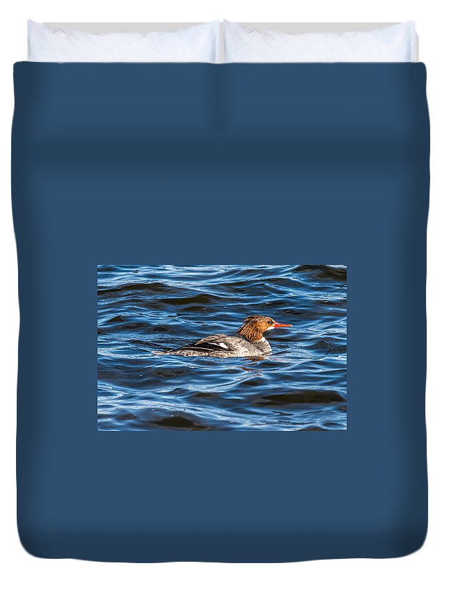 Female Duvet Cover featuring the photograph Merganser by Paul Freidlund