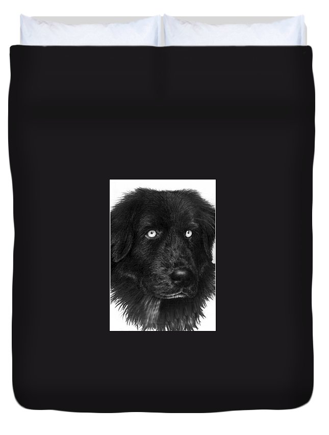 Dog Duvet Cover featuring the drawing Merlin by Rachel Christine Nowicki