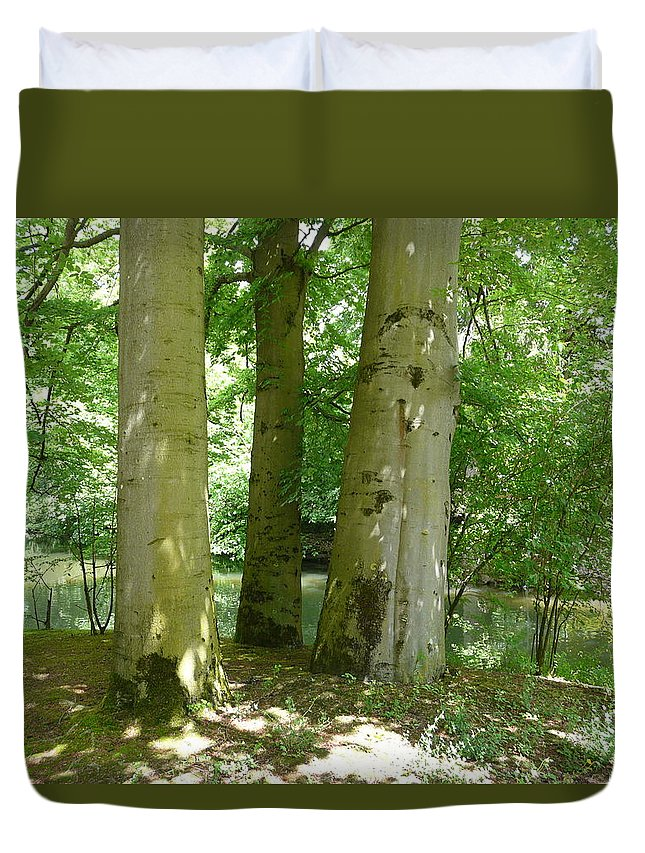 Landscape Duvet Cover featuring the photograph Mighty Beech Trees by Valerie Ornstein