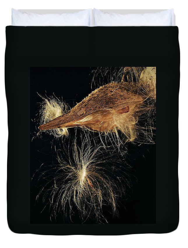 Mgp Photography Duvet Cover featuring the photograph Milkweed Pod by Michael Peychich