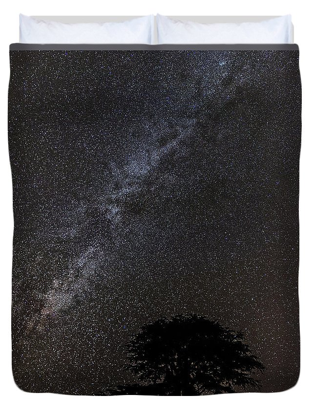 Aurora Duvet Cover featuring the photograph Milky Way And Tree by Sandra Cockayne