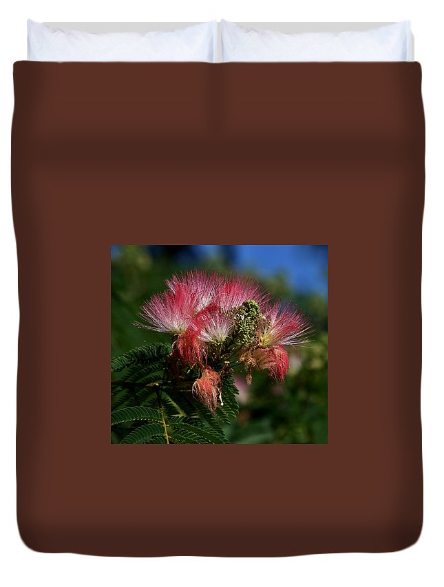 Mimosa's Duvet Cover featuring the photograph Mimosas by Kathy Kirkland